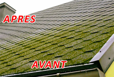 Antimousse traitement toitures murs et terasses for Anti mousse naturel toiture